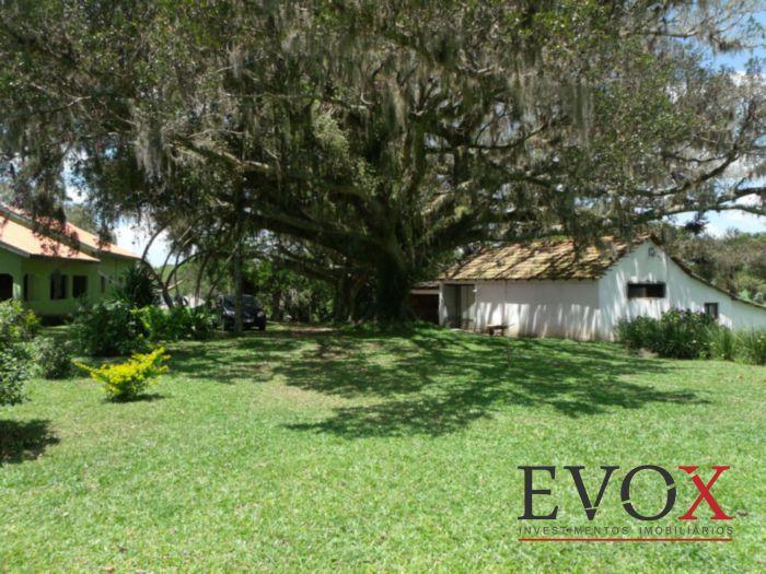 Sítio, Zona Rural, Sentinela do Sul (EV1826) - Foto 3