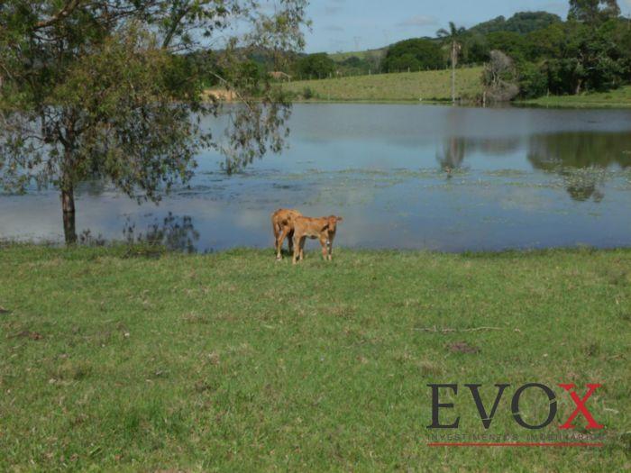 Sítio, Zona Rural, Sentinela do Sul (EV1826) - Foto 6