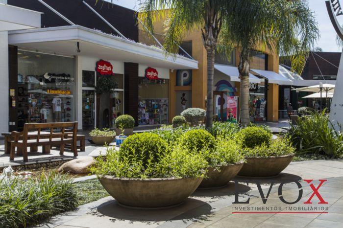 Loja, Cristal, Porto Alegre (EV2380) - Foto 11