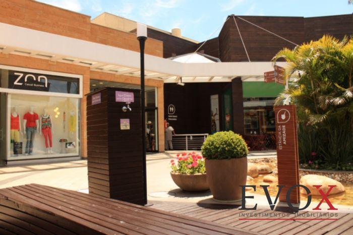 Loja, Cristal, Porto Alegre (EV2401) - Foto 5